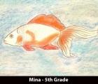 mina-5th-grade
