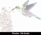 phoebe-5th-grade