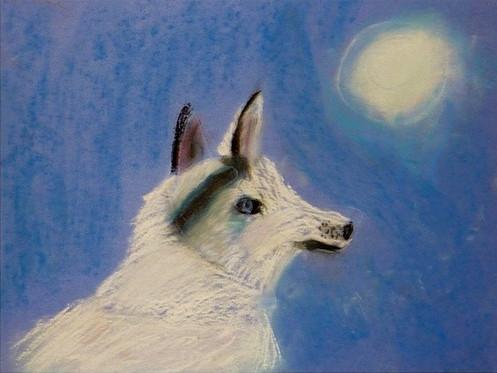 04-tessa-3rd-wolf